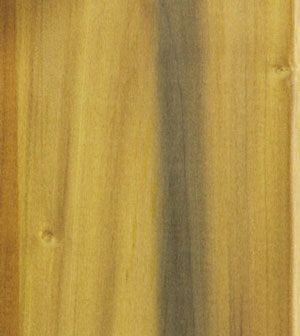 El álamo es bueno para la fabricación de juguetes, tazones y pequeñas embarcaciones para trabajar la madera. Se pinta mejor que sta